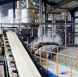 Sustainable management of industrial wastewater for a sugar industry